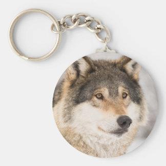 Chaveiro Fim-acima da cara do lobo