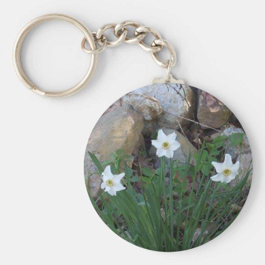 Chaveiro Flores brancas bonito em um jardim de rocha