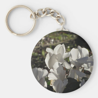Chaveiro Flores brancas do cyclamen de Backlits no fundo