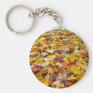Chaveiro Folhas caídas da cor da queda nos parques mmoídos