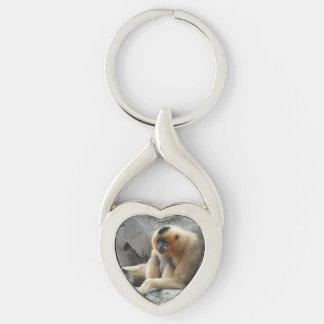 Chaveiro Foto do Gibbon alaranjado e preto que relaxa no