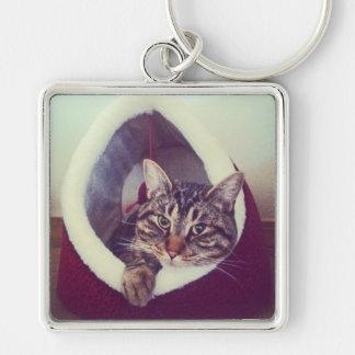Chaveiro Gatinho do gato malhado na fotografia do Fim-Acima