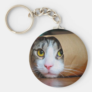 Chaveiro Gato de papel - gatos engraçados - meme do gato -