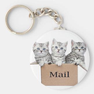 Chaveiro Gatos novos na caixa de cartão com correio da