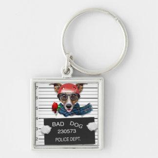 Chaveiro Jaque engraçado russell, cão do Mugshot
