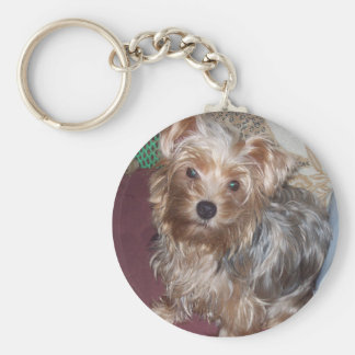 Chaveiro Keyring bonito do yorkshire terrier