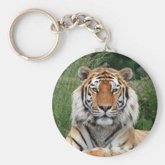 Chaveiro Keyring bonito principal da foto do tigre,