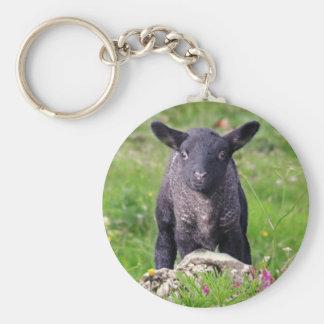 Chaveiro Keyring das ovelhas negras do Baa-Baa
