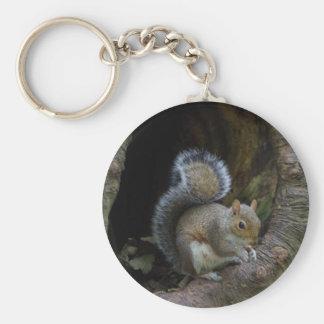 Chaveiro Keyring do esquilo