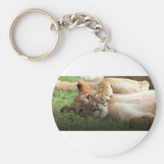 Chaveiro Leão Cub africano
