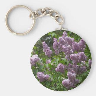 Chaveiro Lilac Bush bonito