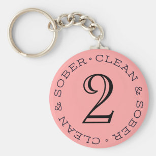 Chaveiro Limpe o presente da recuperação do Keyring do