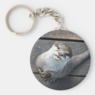 Chaveiro Lontra