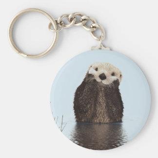 Chaveiro Lontra bonito que está em uma lagoa que guardara