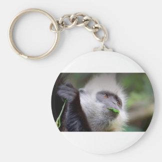 Chaveiro Macaco africano