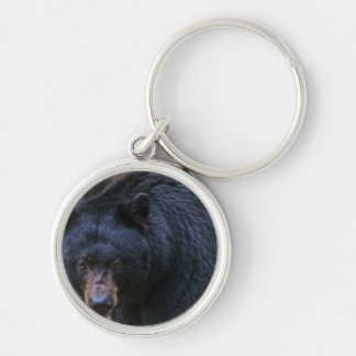 Chaveiro Majestade do urso preto