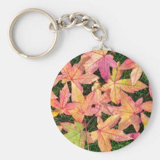 Chaveiro Muitas folhas de bordo coloridas do outono na