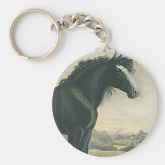 Chaveiro O cavalo de esboço antigo do preto do condado da