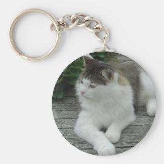 Chaveiro ou Keyring - imagem 1 do gato    de racum