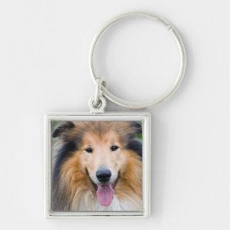 Chaveiro Pequeno (3,5cm) LevarChave quadrado Premium cão