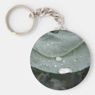 Chaveiro Pingos de chuva nas folhas da couve-flor