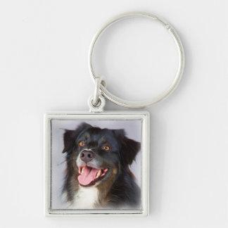 Chaveiro Pintura do cão - arte do cão - pet a arte