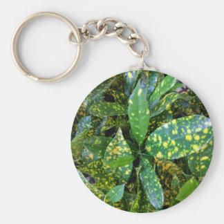 Chaveiro Planta do Croton