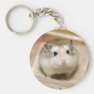 Chaveiro PMT o hamster do bebê: Olhar fixo