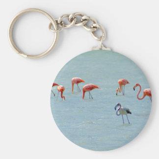 Chaveiro Rebanho cinzento e cor-de-rosa dos flamingos no