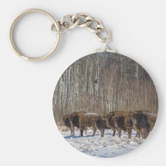 Chaveiro Rebanho do bisonte