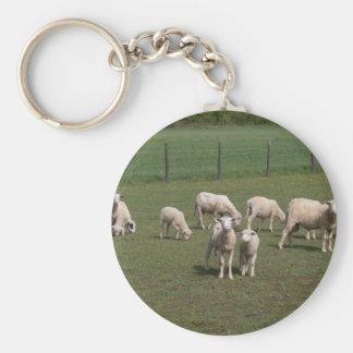 Chaveiro Rebanho dos carneiros