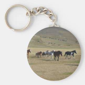 Chaveiro Rebanho dos cavalos