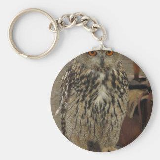 Chaveiro Retrato de coruja longo-orelhuda. Otus do Asio,