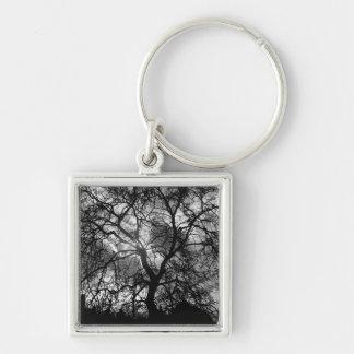 Chaveiro Silhueta dramática da árvore