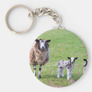 Chaveiro Sira de mãe a carneiros com os dois cordeiros