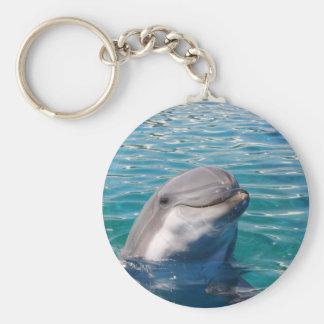 Chaveiro Sorriso do golfinho
