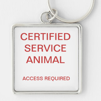 Chaveiro Tag de cão animal certificado do serviço