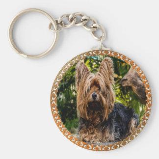 Chaveiro Terrier marrom e preto de Yorkshire adorável
