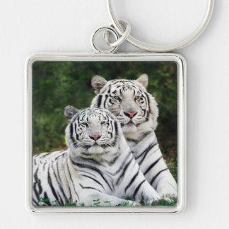 Chaveiro Tigres brancos