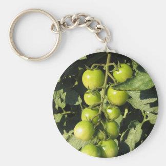 Chaveiro Tomates verdes que penduram na planta no jardim