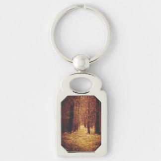 Chaveiro Trajeto de floresta…