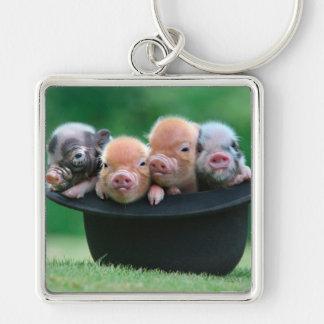 Chaveiro Três porcos pequenos - três porcos - chapéu do