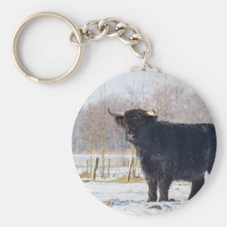 Chaveiro Vaca escocesa preta do escocês na neve do inverno