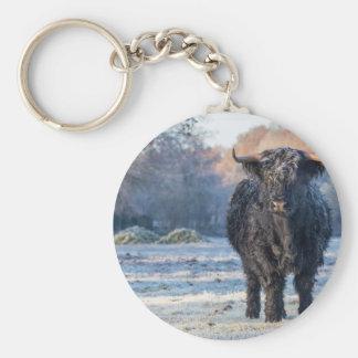 Chaveiro Vaca escocesa preta do escocês na paisagem do