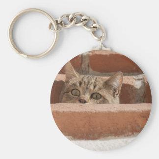 Chaveiro Wildcat novo curioso da atenção dos olhos de gato