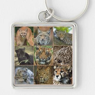 Chaveiro Wildcats