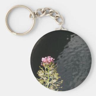 Chaveiro Wildflowers contra a superfície da água de um rio