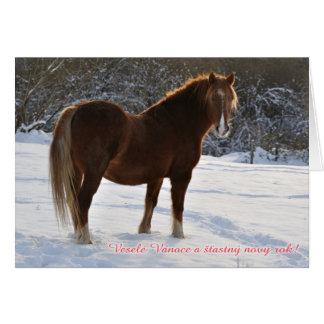 Checo, cavalo no cartão de Natal da neve