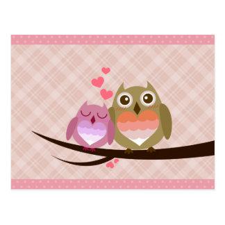Cheio bonito do casal da coruja do convite do
