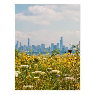 Chicago como visto do pássaro do porto de Montrose Cartão Postal